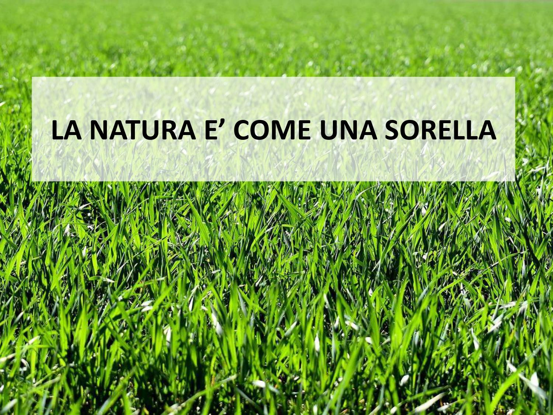 SLIDE_enciclica_laudatosi_page-0002