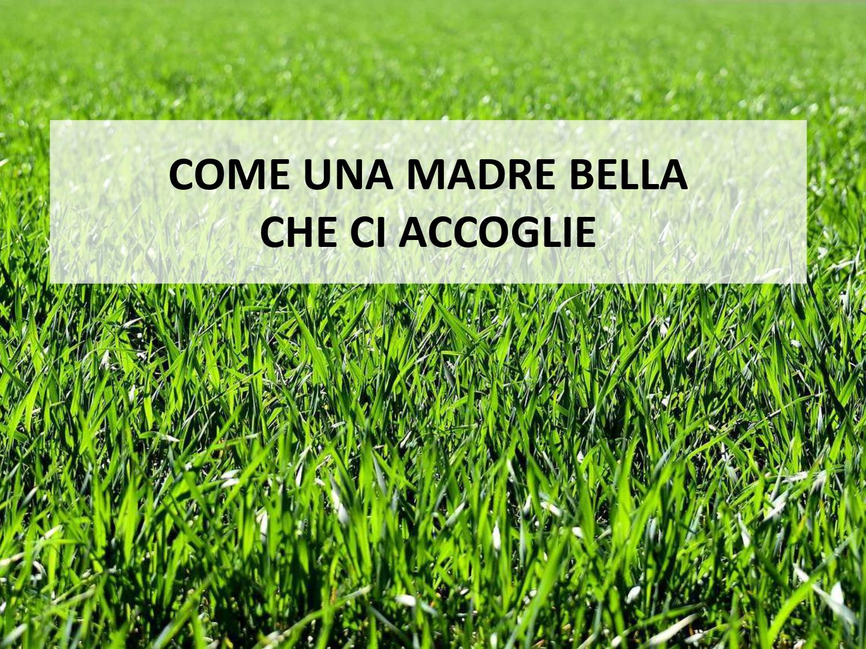 SLIDE_enciclica_laudatosi_page-0003