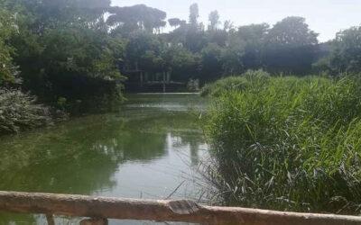 Monumento Naturale Ex SNIA, ampliamento dell'area protetta